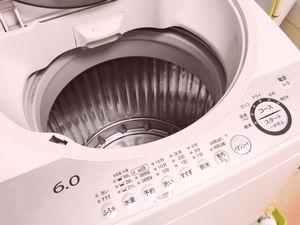 転勤族が選ぶ洗濯機
