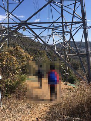 道樹山の電波塔