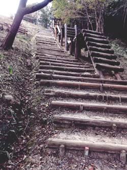 アスレチック階段上り