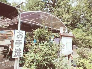 浜北森林アスレチックコース31ポイント目の休憩所