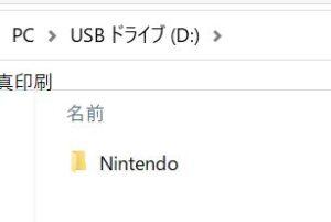 MicroSDカード内のNintendoフォルダ